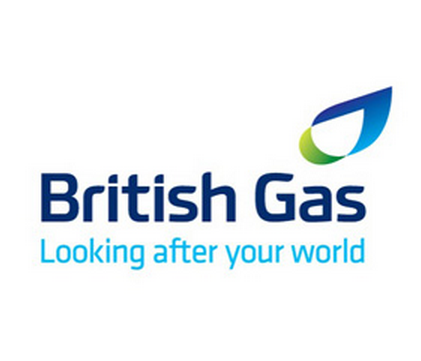 British Gas saw its profits fall by 6%